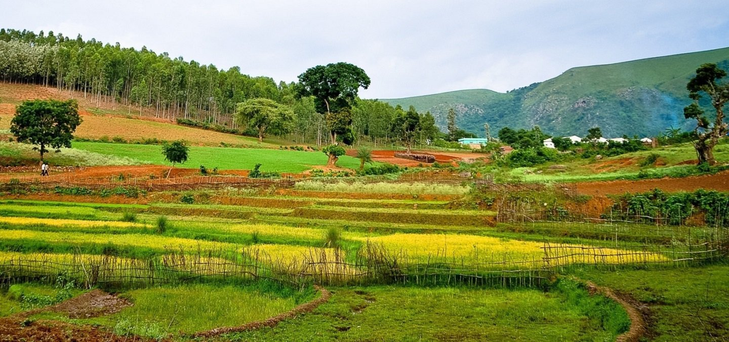 araku valley images hd, araku valley beautiful images, Araku Valley new year party,